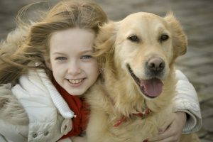 Pet Care Essentials To Consider Before Getting A Dog