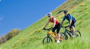 Tips On Finding The Best Bicycle Insurance