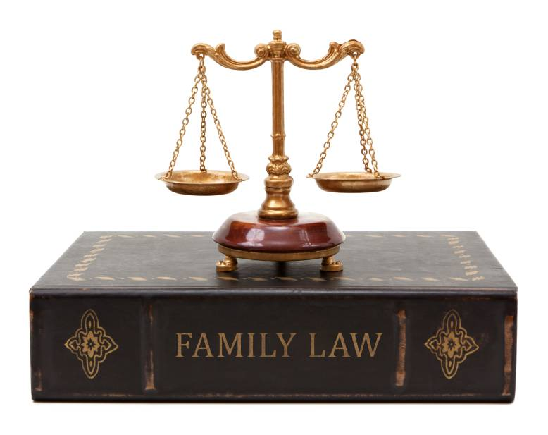 Are Family Law Mediators Among The Most Well Compensated Legal Professionals?