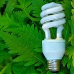 Eco Living - 4 Easy Ways to Go Green