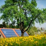 Is Green DIY Energy Worth Your Time and Money?