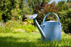 6 Ways To Get Your Lawn And Garden Ready For Spring