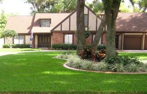 Choosing The Right Grass For Your Lawn