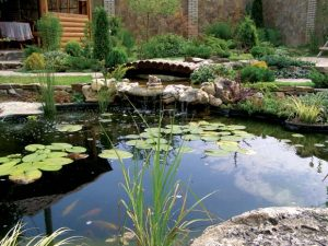 Easy Ways To Make Your Home More Water Efficient