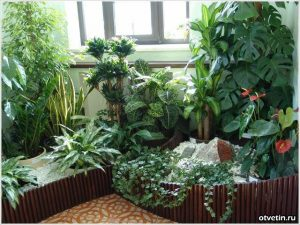 Easy Ways To Purify The Air In Your Home