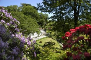 Here Are Some Simple Steps To Make Your Landscape Much Beautiful