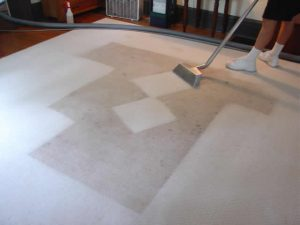 Keeping The Carpet Clean Without A Service