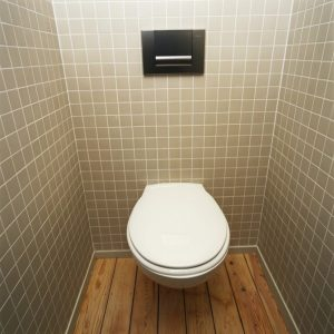 Qualities Of A 'Good' Toilet