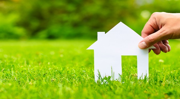 Does Home and Contents Insurance Cover What's In Your Garden?