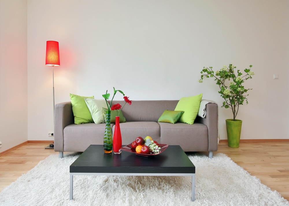 5 Ways In Which You Are Treating Badly Your House Plants