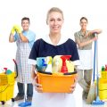 Advantages Of Professional Carpet Cleaning Companies