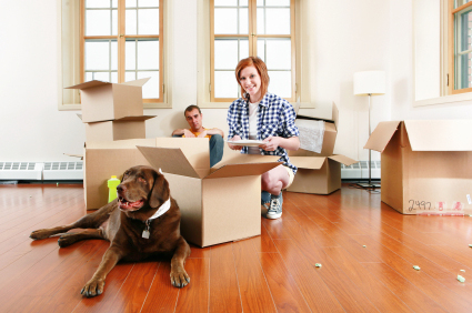 Selecting A Removal Firm To Move With Your Pet To Hungary