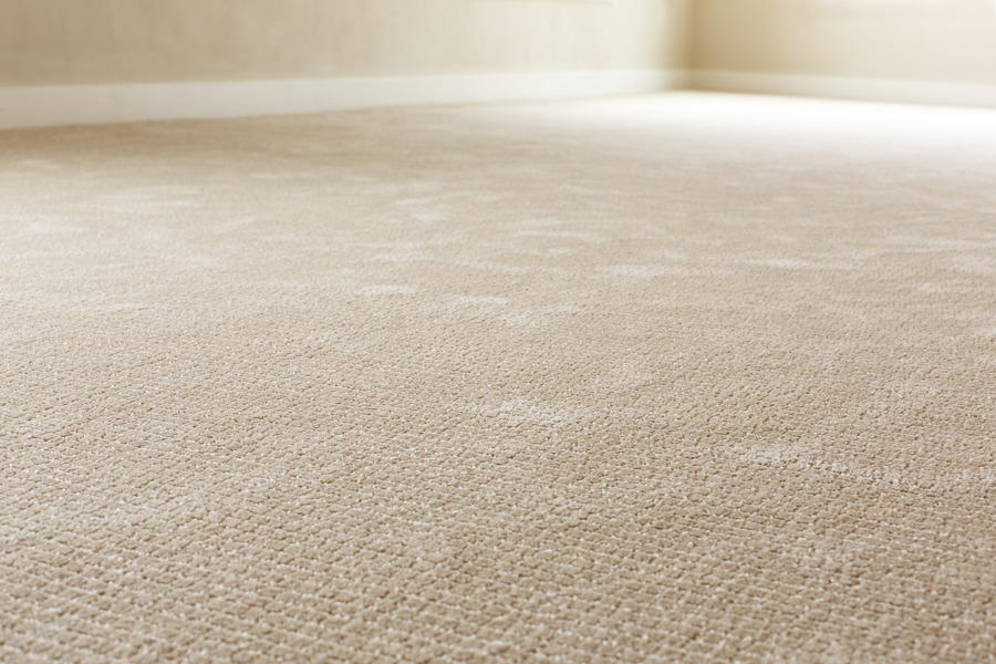 Best Carpet Drying Tips