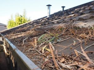 Gutter Guard Protection - Vital For The Health Of Your Family