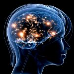 Nootropics Canada – Creating New Hope With Wondrous Mental Treatment Powers