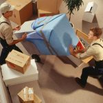 Top Reasons To Choose Professional Moving Company Toronto!