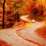 The Guide to Southeast U.S. Fall Road Trips