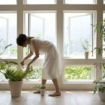 7 Ways To Health-Proof Your Home