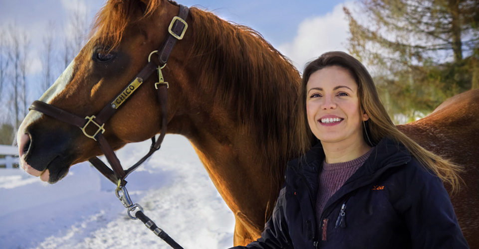 Life Story About Commencing Of Horse Film