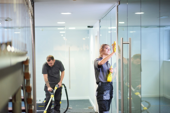 Specialist Windows Cleaners --- Top-Notch Service!