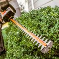 Factors You Should Consider Before Buying A Hedge Trimmer
