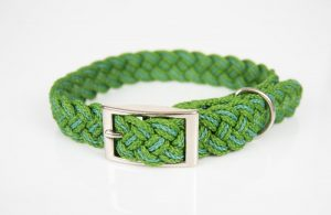5 Reasons Why You Should Get A Hemp Collar For Your Dog