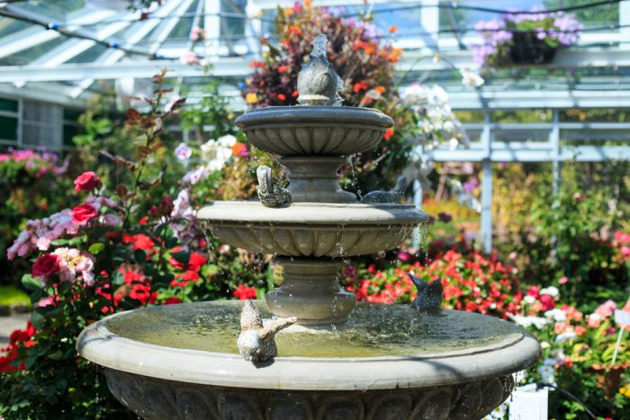 5 Tips On How To Clean Your Indoor Fountain