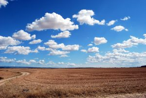 Investing In Land - How To Make It A Profitable Source Of Income