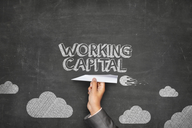 What Is The Difference Between Term Loans and Working Capital Loan?