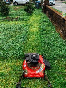 Exploring Landscaping Ideas and Tools Like A Lawn Mower Cover For Enhancing The Look Of Your Yard